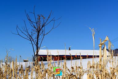 哈尔滨 雪谷 哈尔滨(2日行程)