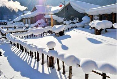 哈尔滨 二浪河造雪地火锅 雪乡(4日行程)