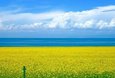 青海湖(2日行程)