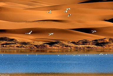 探索沙漠史诗级徒步路线 腾格里穿越活动(5日行程)