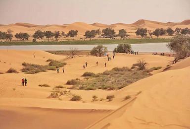 中国第四大沙漠腾格里沙漠千年之叹 并肩行走 五湖连穿 有赠品(4日行程)