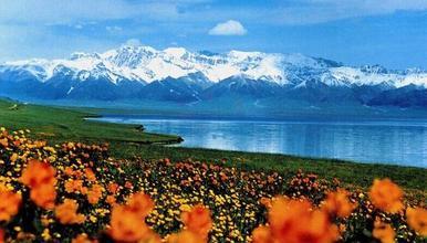 新疆喀纳斯禾木 白哈巴 伊犁 那拉提 巴音布鲁克 赛里木湖(9日行程)