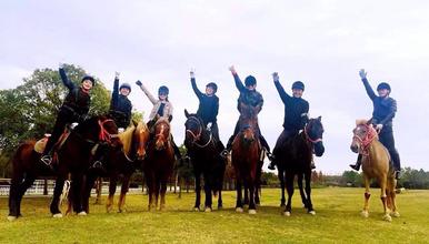 奉贤 海边骑马(1日行程)