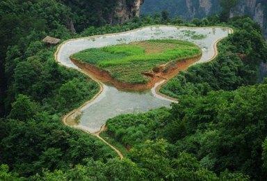 张家界国家森林森林公园 天门山 黄龙洞 宝峰湖(4日行程)