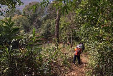 寒假西双版纳原始森林穿越 大勐龙 布朗山徒步之旅(4日行程)