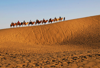 额济纳旗 成都出发 西北沙漠奇观 丝绸之路 绝美胡杨林(10日行程)
