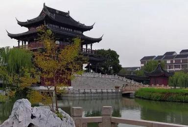 华东苏沪杭 乌镇 西溪湿地游(3日行程)