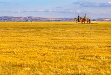 勃隆克沙漠 锡林郭勒大草原 达里诺尔湖看日落(1日行程)