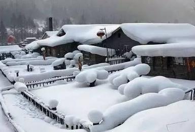全面升级豪华版 村长带大家走进童话世界雪乡 长白山 感受冰雪饕餮盛宴(7日行程)