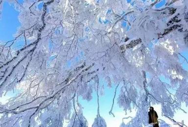 哈尔滨 中国雪乡 长白山 雾凇岛(6日行程)