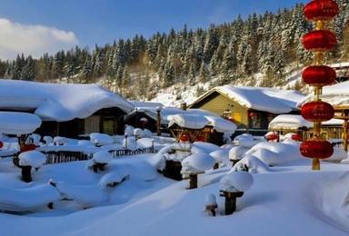 冰情雪韵哈尔滨 中国雪乡穿越 赏雪之旅(7日行程)
