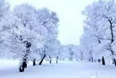 雪乡 长白山东北休闲游(7日行程)