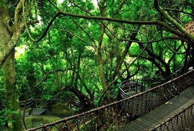 海南三亚 蜈支洲岛 南湾猴岛 呀诺达 南山 天涯海角 国际玫瑰谷(5日行程)