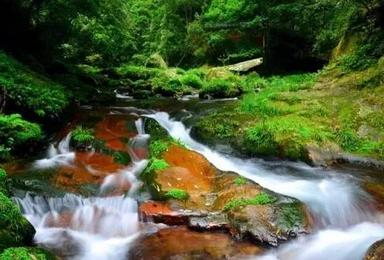 张家界森林公园 天门山 玻璃栈道 凤凰(4日行程)