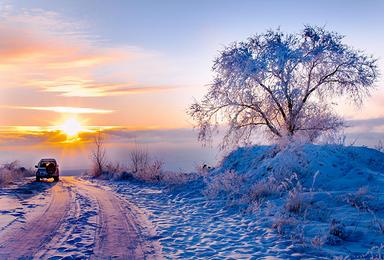 呼伦贝尔旅游包车观雪景 驯鹿爬犁 森林穿越 两极之旅(7日行程)