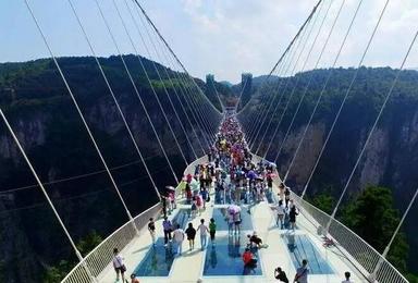 张家界玻璃桥 凤凰古城游(4日行程)