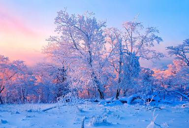 兜峰户外 哈尔滨 东升徒步穿越 雪乡 长白山 吉林雾凇岛(7日行程)
