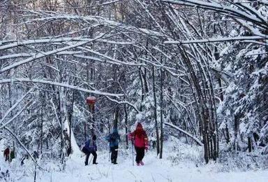 冬季里的神话 东北雪乡(7日行程)