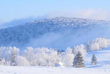 冰情雪韵哈尔滨 大雪谷 中国雪乡 长白山 雾淞岛赏雪活动(7日行程)