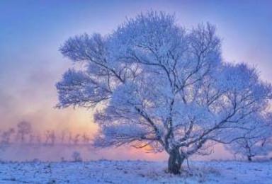 兰州到黑龙江第三季相约冰城雪乡大美长白山(6日行程)