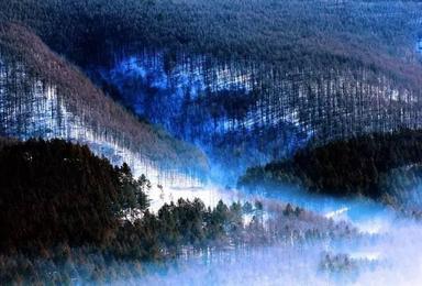 冬天的呼唤 哈尔滨 雪乡 亚布力滑雪(5日行程)