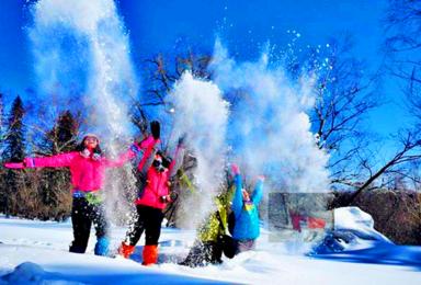 火车团 吉林雾凇岛 雪乡 雪谷激情穿越 哈尔滨冰雪大世界(3日行程)