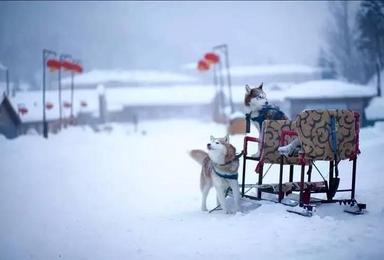 东北风情 亚布力激情滑雪 二浪河 雪乡穿越林海 镜泊湖冬捕活动(5日行程)