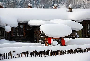 哈尔滨 东升穿越 雪乡 亚布力深度滑雪活动(5日行程)