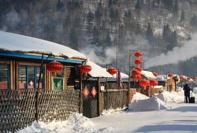 哈尔滨 雪乡亚布力滑雪 纯玩双(6日行程)