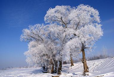 火车 雾凇岛 吉林雾凇岛 中国雪乡 雪谷穿越(4日行程)