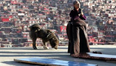 秘境环线A线 川西绝美秘境 莫斯卡 党岭 色达 丹巴藏寨(8日行程)