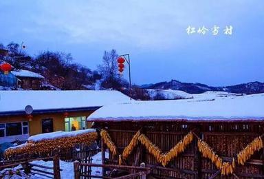 吉林雪村休闲游(2日行程)