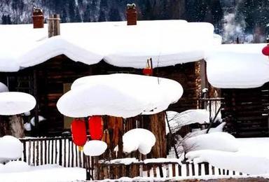 相约冰雪童话世界 哈尔滨 长白山(7日行程)