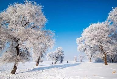 哈尔滨赏冰雕 穿越雪乡去魔界看雾淞(8日行程)