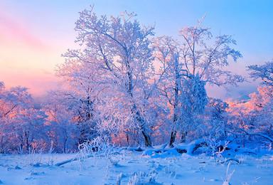 东北雪乡摄影 扎龙丹顶鹤 查干湖冬捕 雾凇岛 镜泊湖(9日行程)