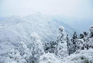 衡山看雪赏松(2日行程)