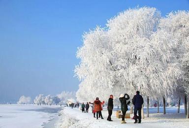 雾凇岛 雪谷 雪乡 哈尔滨(3日行程)