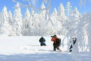 远离雾霾 中国冬季最美的地方 雪乡等你一起玩耍(7日行程)