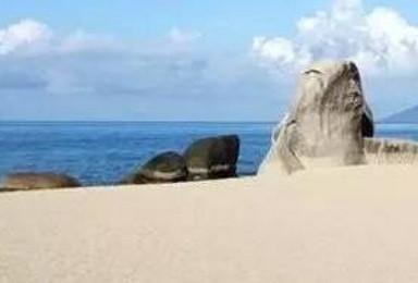 寒假 温暖海南 相约三亚 海南环岛纯净 纯玩双飞游(5日行程)