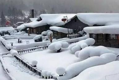 寒假东北专线 村长带大家走进童话世界雪乡 长白山 感受冰雪饕餮盛宴第二期(7日行程)