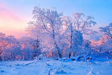 雾凇岛 最冷的冬天 看最美的雪景 雾凇岛 雪乡 雪谷(4日行程)