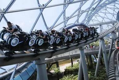上海迪士尼 外滩 科技馆 野生动物园亲子游(3日行程)