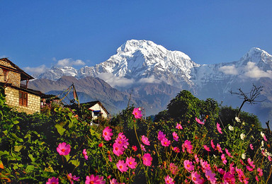 尼泊尔安娜普尔纳大本营 ABC 徒步(12日行程)