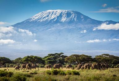 登顶非洲屋脊乞力马扎罗 马兰古路线 资深领队(7日行程)