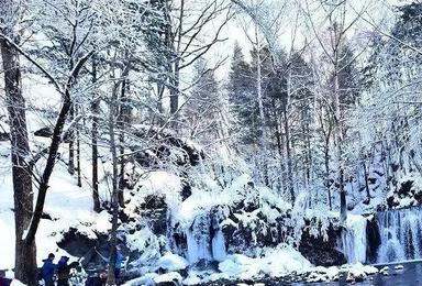 草根和您走进吉林雪乡老里克湖 新魔界 吊水壶 国际雪雕展 美人松公园 长白山民俗博物馆精品游(3日行程)