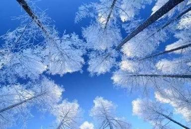 北纬41度的冰雪礼遇 携手浪漫长白山 滑雪温泉两不误双飞(5日行程)