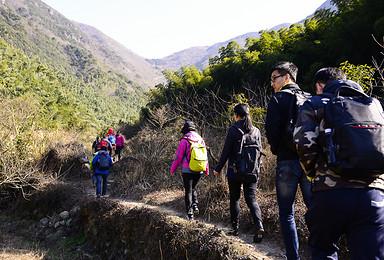 宁海步道 由暴走登山步道到畅享森林温泉的双重之旅(3日行程)
