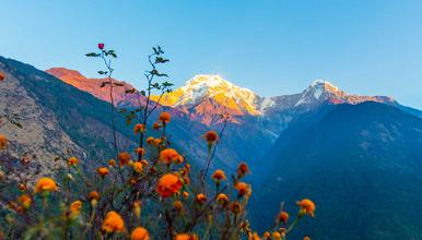 尼泊尔博卡拉 安娜普尔纳 鱼尾峰 滑翔伞 布恩山 小环线徒(8日行程)