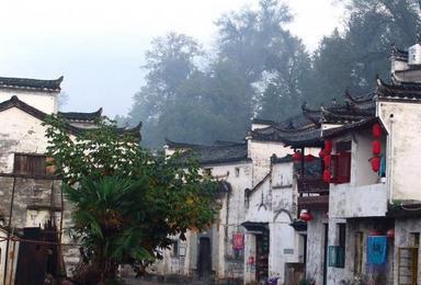 中国最美乡村 婺源 这里不仅只有油菜花海 三清山(5日行程)