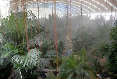 小汤温泉 石佛山 草莓采摘 惊险滑草 有机植物园 动物养殖园(2日行程)
